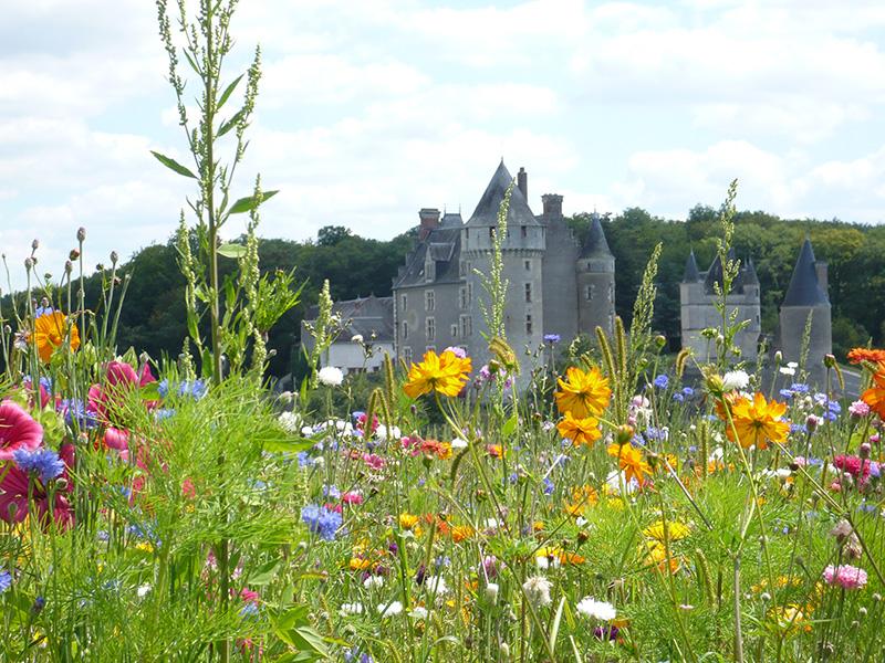 château-montpoupon-fleurs